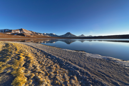 tantrums: Lake lejía with its nice yellow greenish vegetation covered margins and volcanoes in the background. Stock Photo