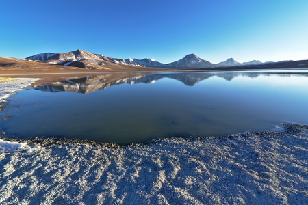 Lake Lejia with tantrums, Lascar, Calientes and Acamarachi Aguas volcanoes in the background. Stock Photo