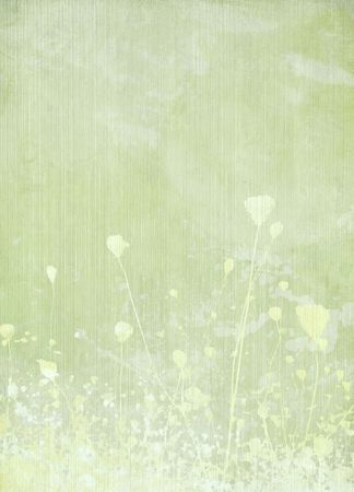 pale background: Meadow flower pale green background Stock Photo
