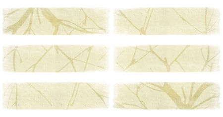 Branch on ivory plaster textured banner set isolated  photo