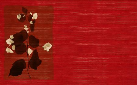 Black and white flower print on stained red wooden slatted background photo
