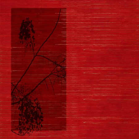 blossom silhouette print on Stained red wooden slatted background photo