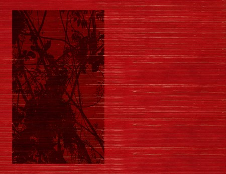 Blossom silhouette print on Stained red wooden slatted background Stock Photo - 7508187