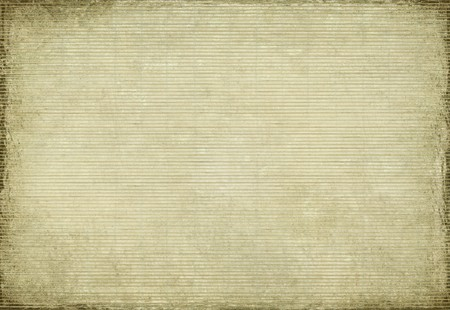 Paper and bamboo woven grunge textured background photo