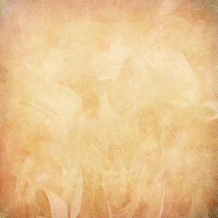 pale background: Peach feather abstract on paper textured background Stock Photo