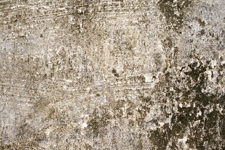 black mold: Roughly cemented wall with black mold corner