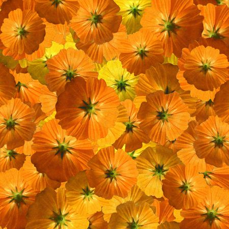 flurry: Orange and yellow flower flurry textured background