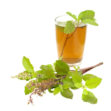 tulasi: Holy Basil Tulsi Tea Ayurvedic Remedy isolated Stock Photo