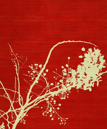 Blossom Branch Print on Red Wood Background photo