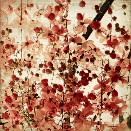 Red blossom print on ribbed bamboo antique background Standard-Bild