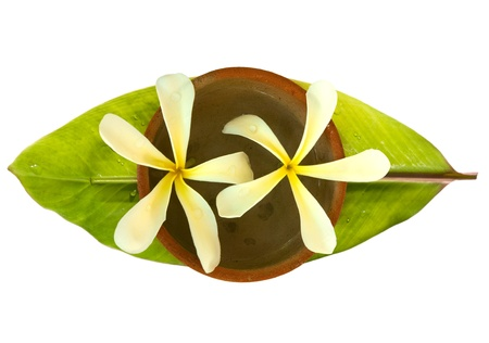 Frangipani in a bowl on a fresh banana leaf with water drops isolated photo