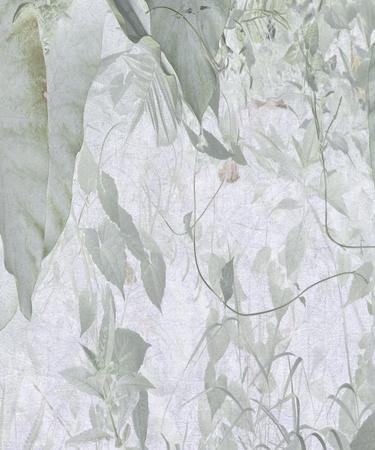 Grey Watercolor Jungle Foliage Art Textured Background photo