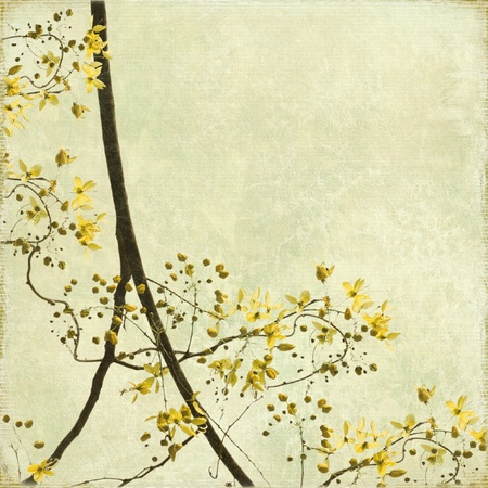 Tangled Blossom Border on Antique Paper and Bamboo Textured Background photo