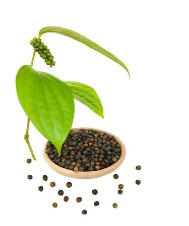 pepe nero: Pepe nero in una ciotola con ramo fresca e pepe sparse isolati