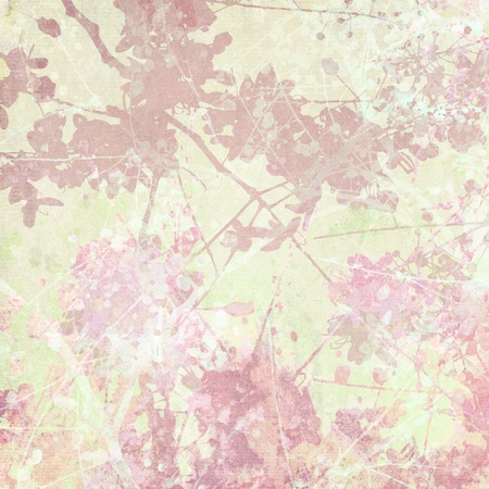 pale cream: Pale Blossom and Branch Art Print on Antique Background