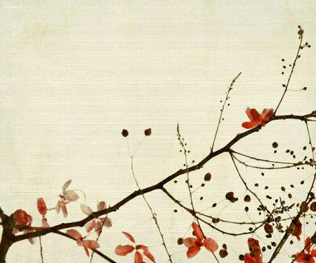 fistula: Red Flower And Foliage on Bamboo Textured Background