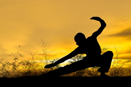 artes marciales: Imagen de un artista marcial en campo Foto de archivo