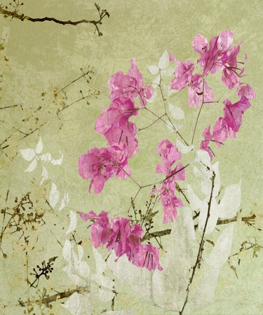 bougainvillea flowers: Calligraphy Style Floral Artwork on Textured Background