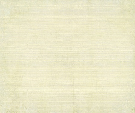 Image of a Bamboo Paper Style Textured Abstract Background  photo