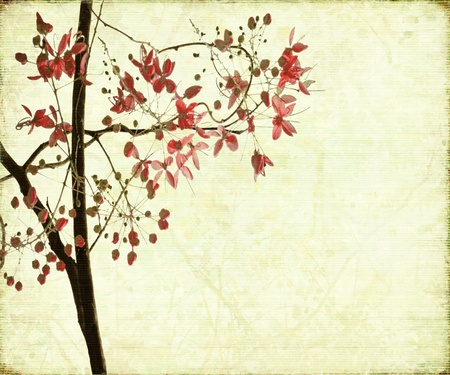 Blossom Design on Antique Ribbed Textured Background