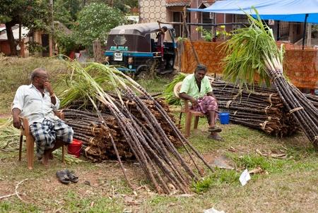 increasingly: KERALA - 29 dicembre: Canna da zucchero grezzo � offerto in vendita il 29 dicembre 2010 in Kerala, India. Tra i maggiori produttori mondiali di canna da zucchero in tutto il mondo, India � sempre pi� distogliendo il raccolto per la produzione di etanolo bio-carburante.