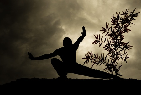 kung fu martial art grey and black background Stock Photo - 9651049