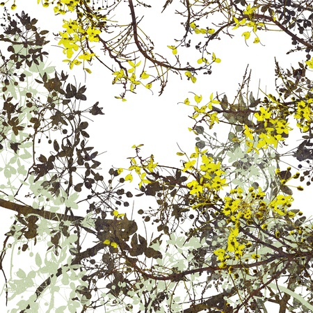 flower art digital yellow branches painting background photo