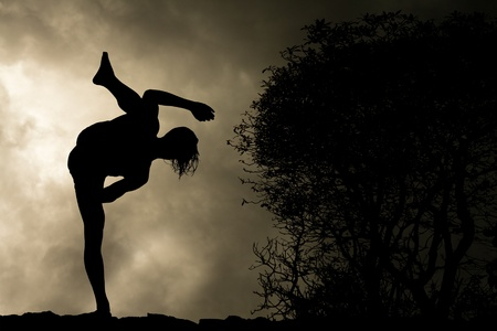 man practises martial arts high kick silhouette on stormy sky background Stock Photo - 9651046