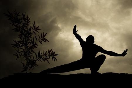 kung fu man practicing martial art background Standard-Bild