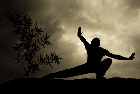 kung fu: kung fu man practicing martial art background Stock Photo