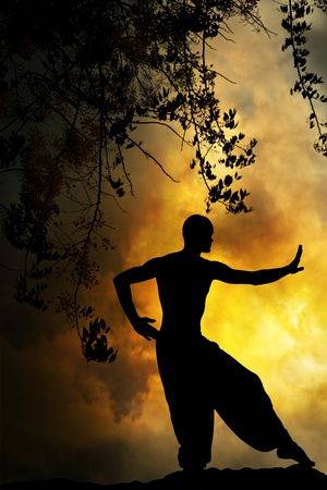 Spiritual Martial Arts Sunset Meditation Yellow Background Stock Photo - 9720756