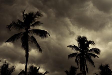 Image of a Tropical Monsoon Skyline Background photo