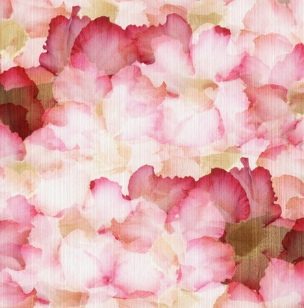 feminine background: Cloud Pink and Red Desert Rose Petals on Ribbed Natural Paper