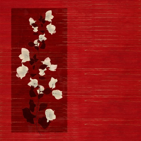 White and Black Flower print on Stained Red Wooden Slatted Background  photo
