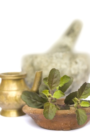 Ayurvedic Arrangement with Tulasi, Oil and Stone Pestle and Morter photo