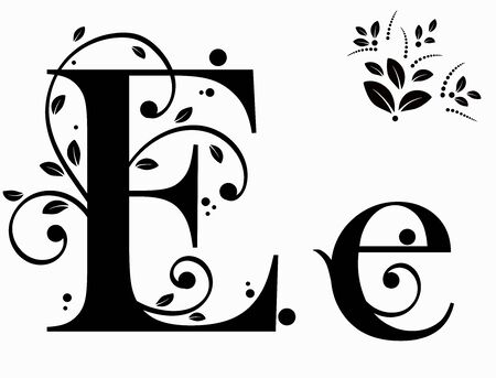 Decorated Alphabet with ornaments vintage vector, Letter E upper and lower case with leaves vector. Decoration vintage for invites card and other concept ideas. Illustration alphabet