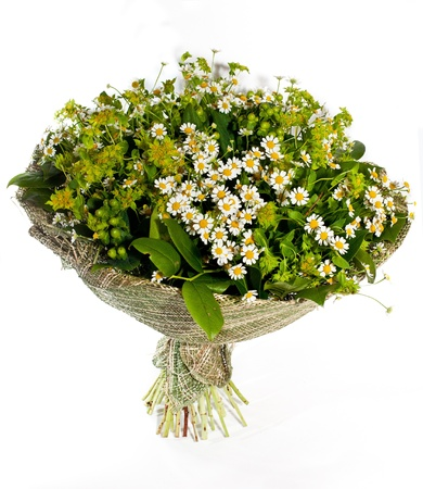 bouquet of  white camomile and field flowers on white background