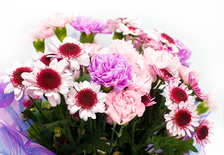 bunch of pink flowers on white background