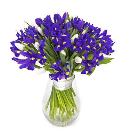 bouquet of violet irises isolated on white