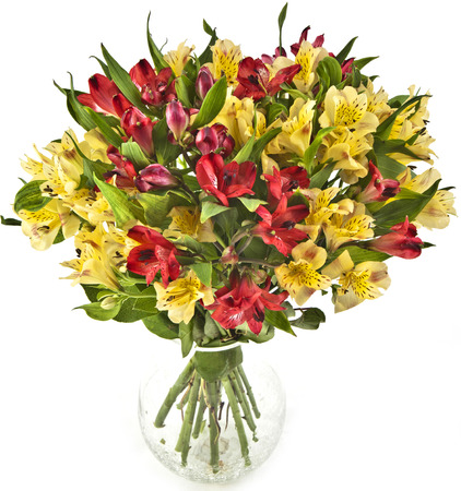 bouquet  in vase isolated on white background Stock Photo