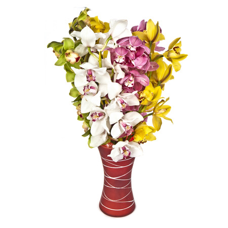 bouquet of orchids  in vase  on white background