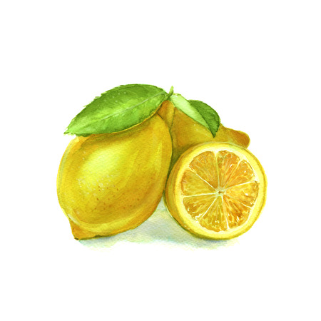 watercolor technique: three yellow lemon with leaves. citrus. isolated. watercolor technique Stock Photo