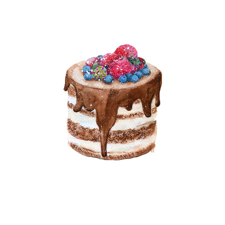 Cake in a rustic style with chocolate and fruit. isolated. watercolor