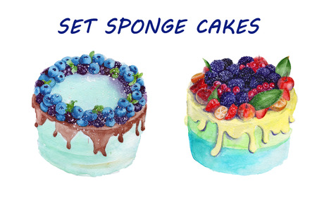 sponge cake: sponge cake with chocolate and fruit. isolated. watercolor Stock Photo