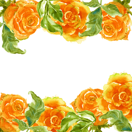 yellow roses: Frame of yellow roses and branches. framing postcards. isolated. watercolor.