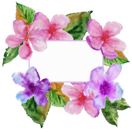 frame with cherry flowers with leaves. isolated. watercolor illustration