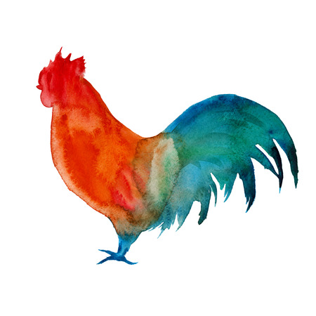 rooster. isolated year of the rooster. watercolor illustration Banco de Imagens