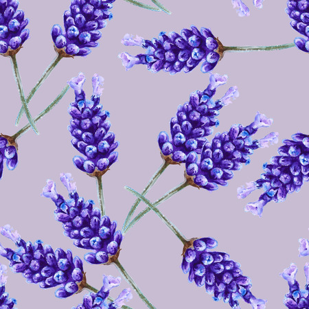inflorescence: background lavender flowers. seamless pattern. inflorescence. watercolor illustration
