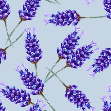 an inflorescence: background lavender flowers. seamless pattern. inflorescence. watercolor illustration