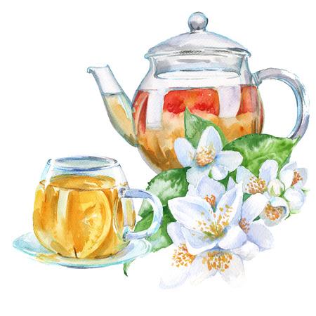 desayuno romantico: Tetera y taza de cristal. té verde con jazmín. aislado. ejemplo de la acuarela.